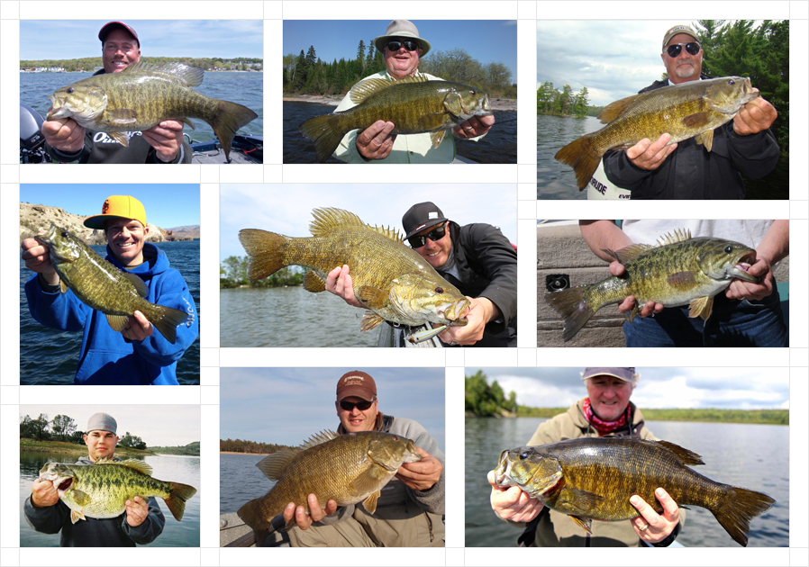 smallmouth-bass-fb