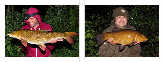 314x220-barbel-tench